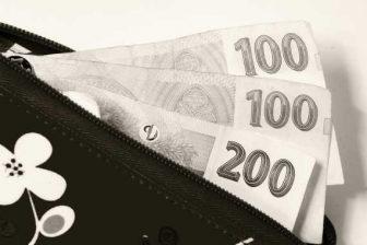Půjčka 20000 bez doložení příjmu